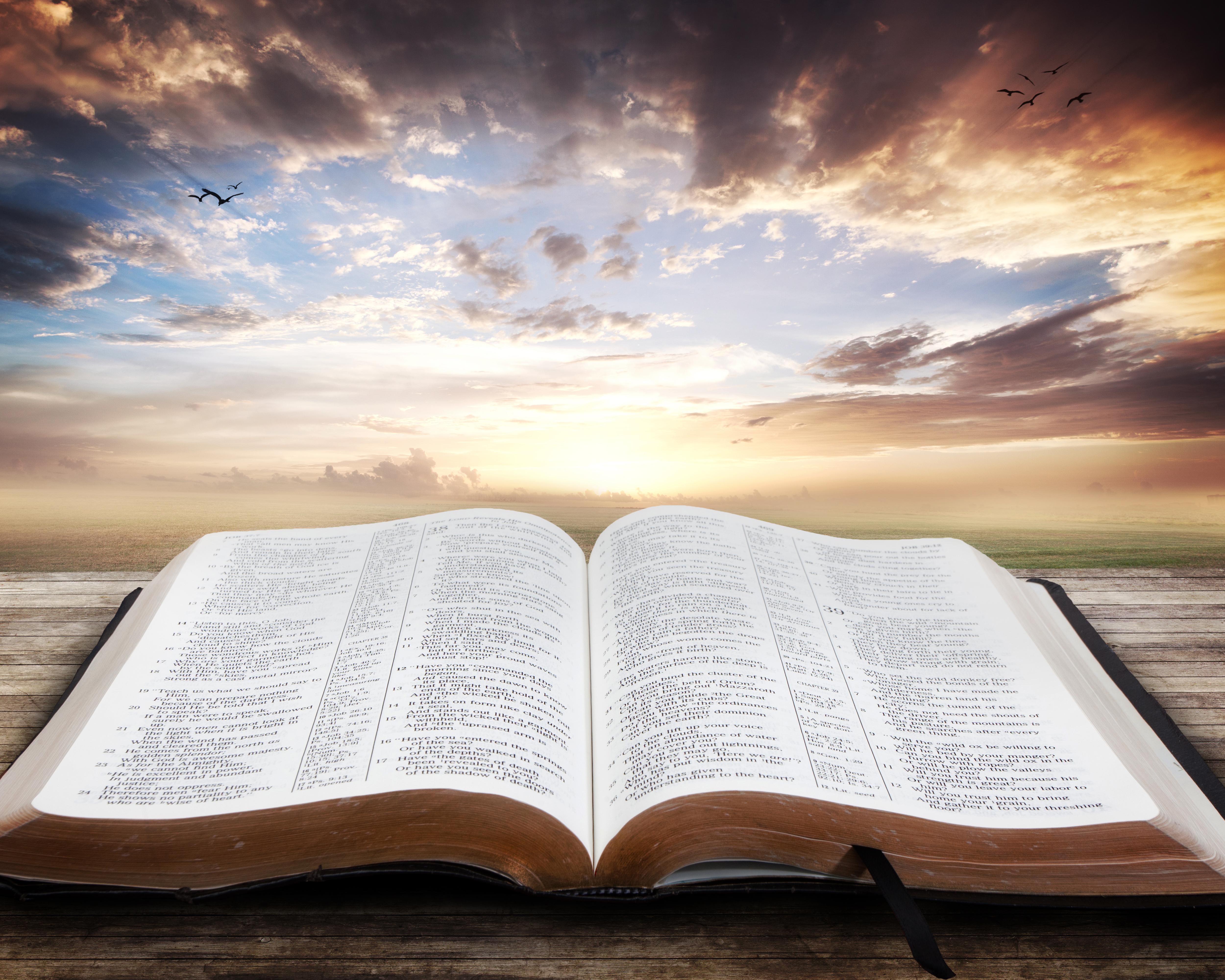 Soma Biblia